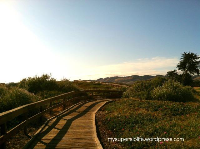 beach boardwalk1