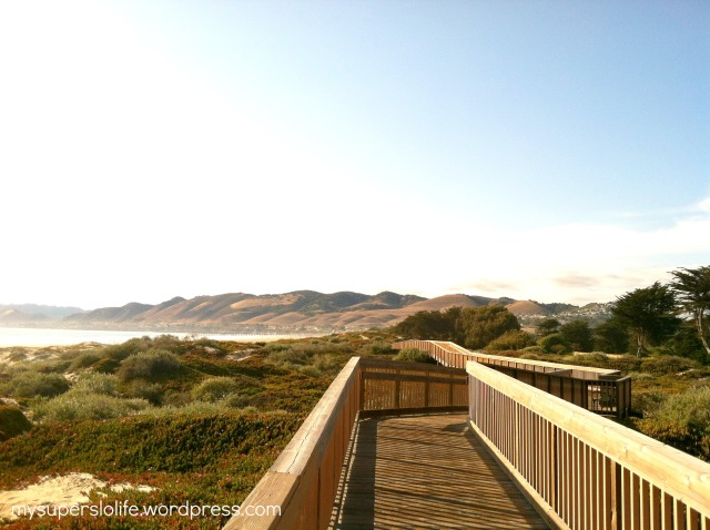 beach boardwalk3